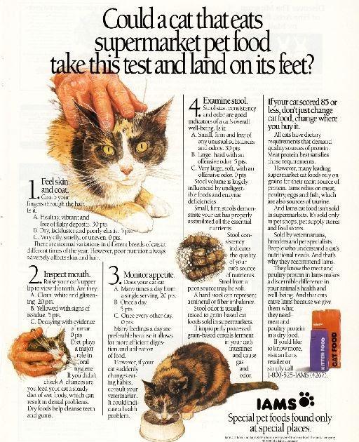 Iams Cat Food Ad