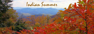 Our Website Indian Summer Native American Art