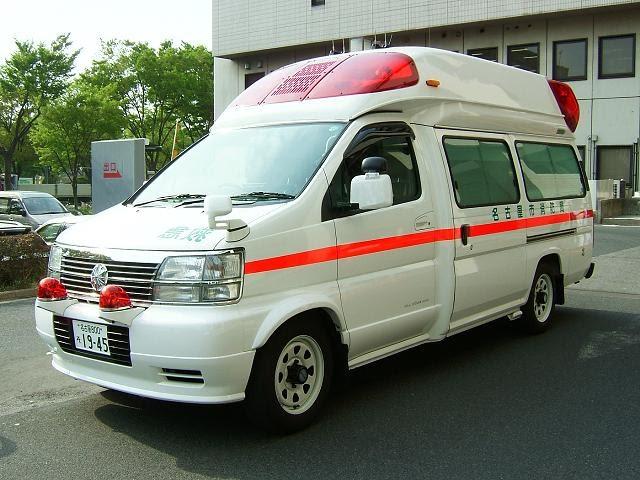 Giappo pazzie giappone ambulanze le grandi tartarughe for Tartarughe grandi