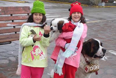 Foto com cães São Bernardo na Calle Mitre, em Bariloche.