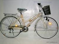 1 City Bike PACIFIC ASTINA 6 Speed Shimano 26 Inci