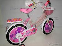 Sepeda Anak EVERBEST 16-912-3 LOVE 3