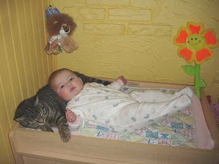 baby and cat