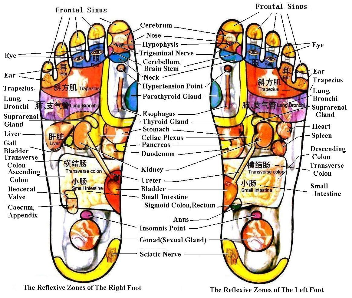 3 Chinese Reflexology and Acupressure Points for High Blood Pressure (Hypertension)