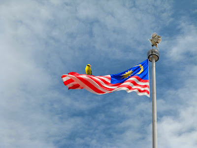 Malaysian Flag/Jalur Gemilang with two birds