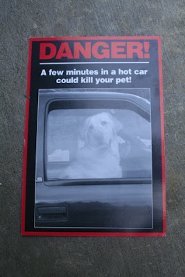 Carreen's Rescue Blog: A hot dog boils to death in a police car