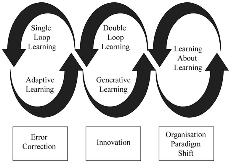 Digital Business World (DBW): Organizational Learning of