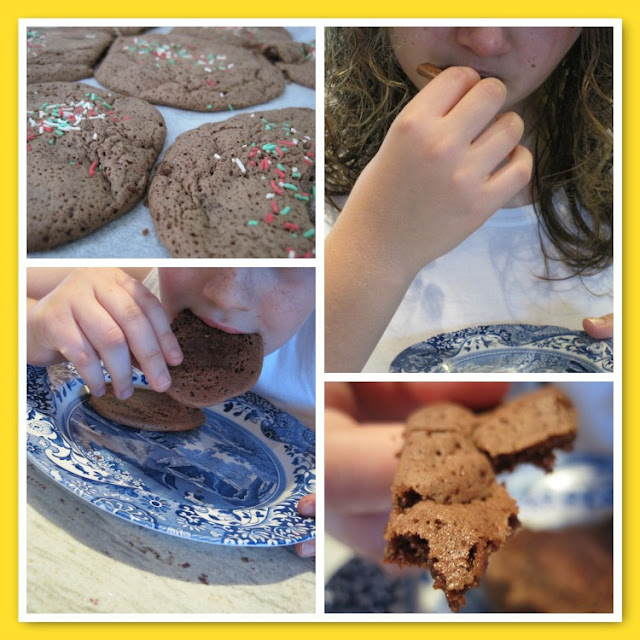 TuesdayTune, Shania Twain, Chocolate Cookies, Natasha in Oz, Recipe