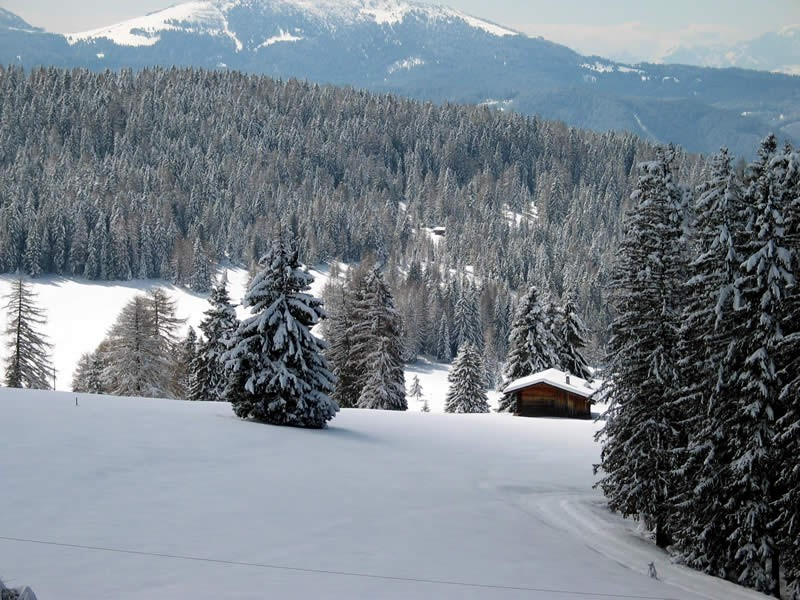 Peisaje de iarna   Wallpapers iarna   Imagini iarna