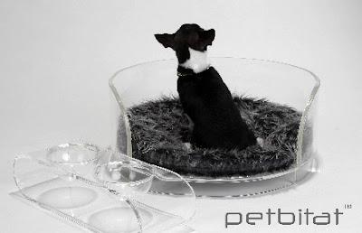 Mm Interior Design Modern Design For The Refined Pet