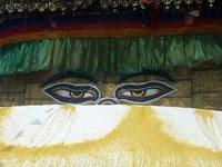 tibetmuertoschinamonjes