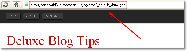 Fix URL Error In W3 Total Cache
