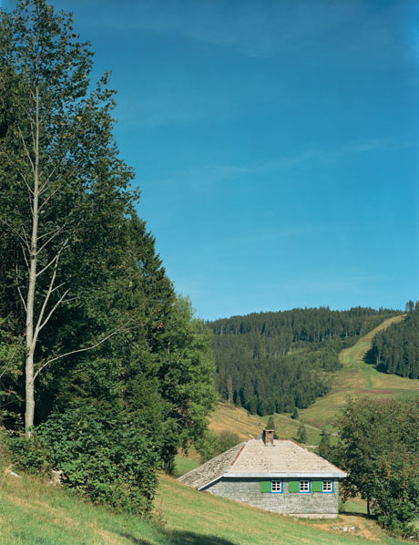 Patrick Lakey, Heidegger: Hut, Todtnauberg, Black Forest, Germany, I, 2005.