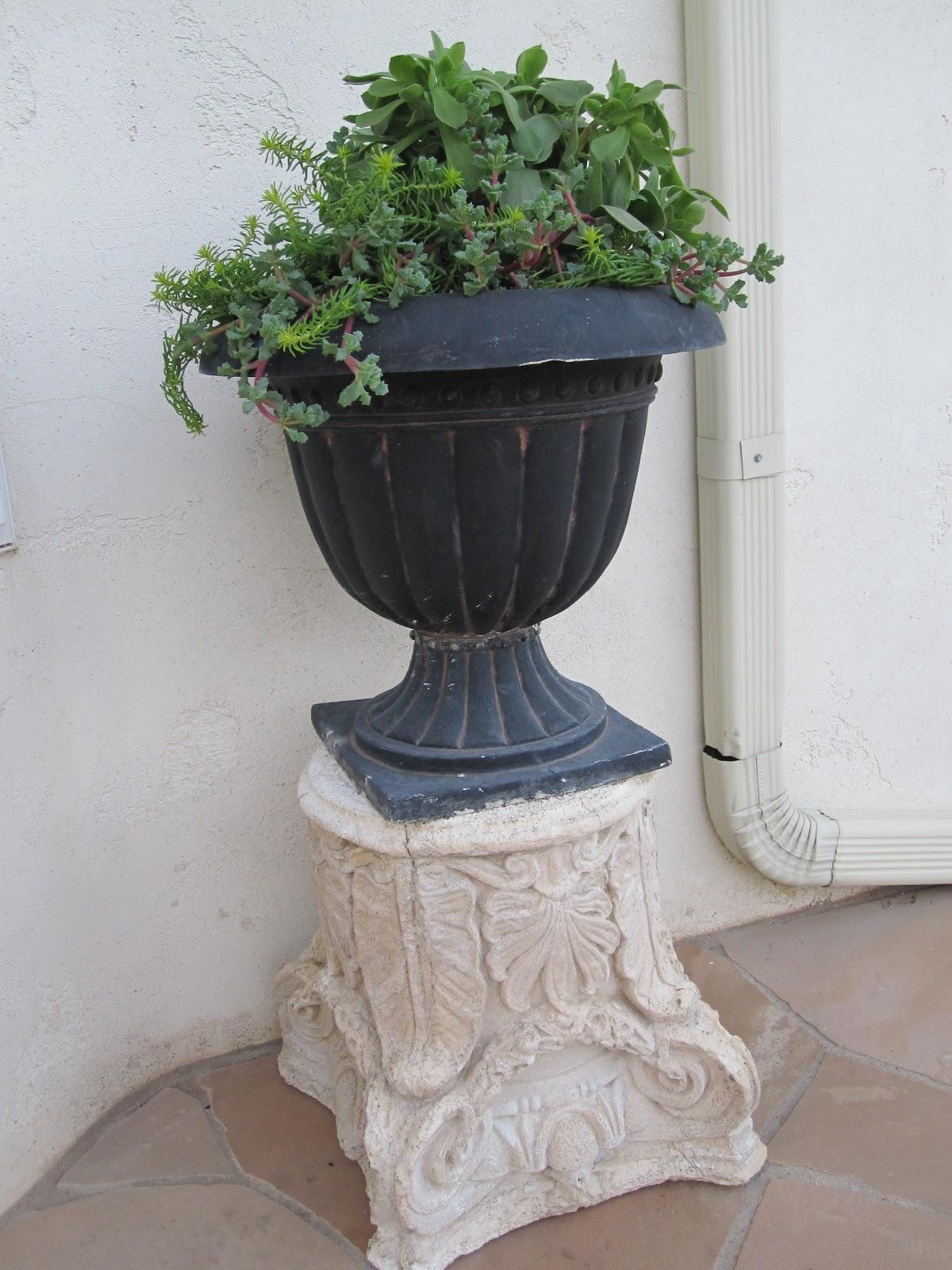 Antiquechase Urns Succulents Amp Vintage Garden Pedestals