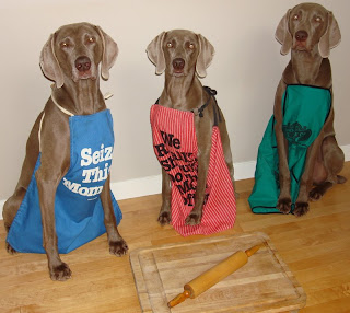 Rosewin Weimaraners Weim Halloween Dress Up