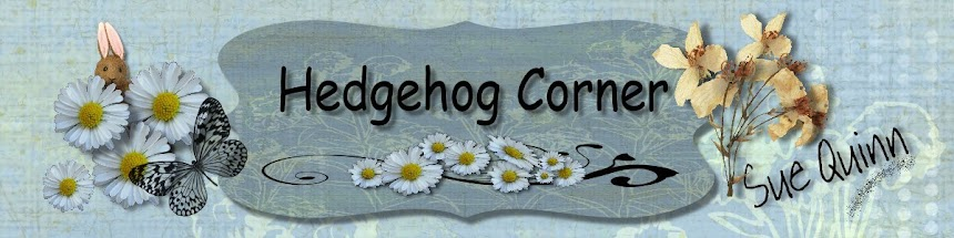 Hedgehog Corner