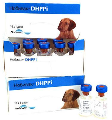 坑口獸醫診所 Hang Hau Veterinary Clinic: 狗狗要打的預防針