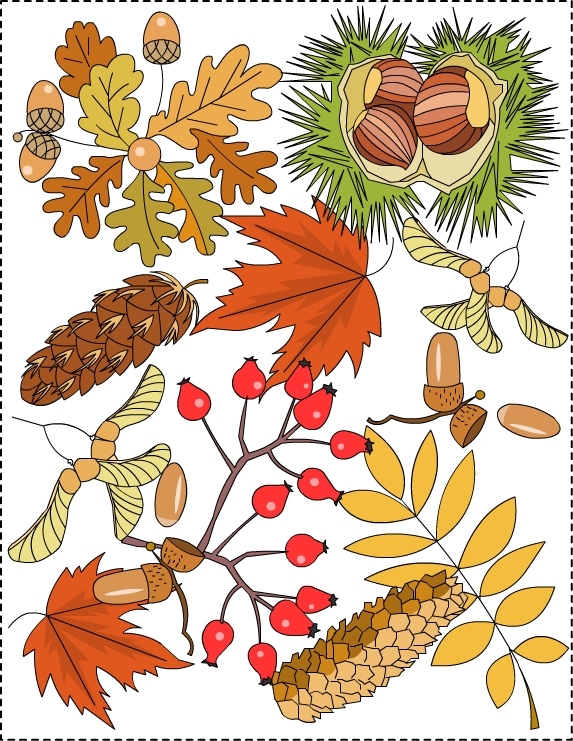 Nicoles Free Coloring Pages Autumn Coloring Pages