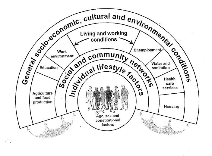 Educación Médica: Determinantes Sociales y Salud de la