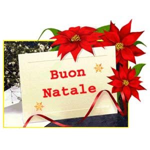 Auguri Di Buon Natale Affettuosi.Auguri Di Buon Natale E Felice Anno Nuovo Partito Del Sud Blog