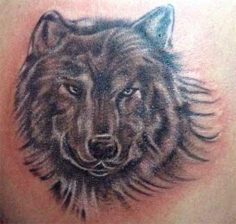 https://i0.wp.com/4.bp.blogspot.com/_NfORAAPiohY/SB4pvw3sMQI/AAAAAAAAAy4/yURI0TMXMEk/s400/wolf+tattoo.jpg