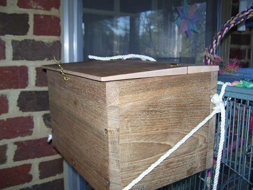A Parrot for Keeps: The Quaker's new nest boxes! (but no ...