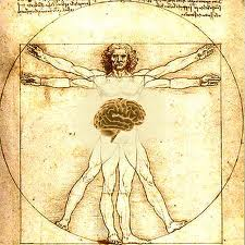 THE HARA - OUR SECOND BRAIN?   AIKIDO WORLD BLOG