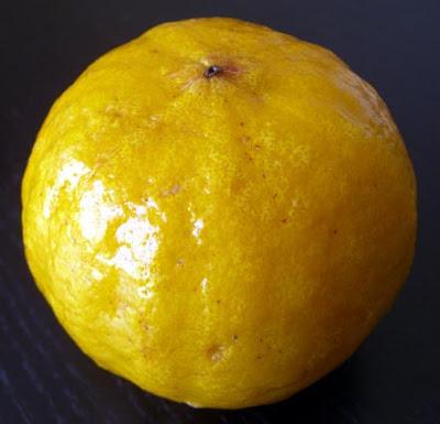 bergamote fruit photo