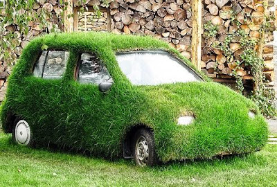 15 Cool Grass Covered Cars (16) 12