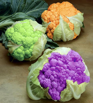 Colorful Vegetables & Fruits