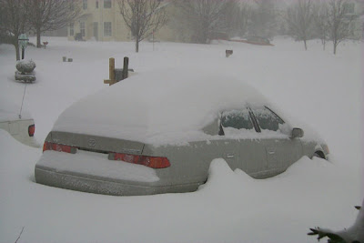 Cars Confronting Snow (3) 3