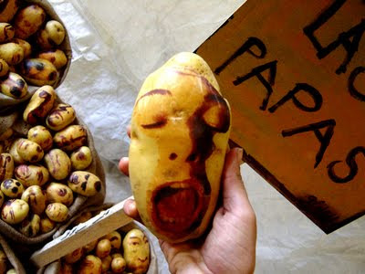Potato Art and Sculptures (30) 7
