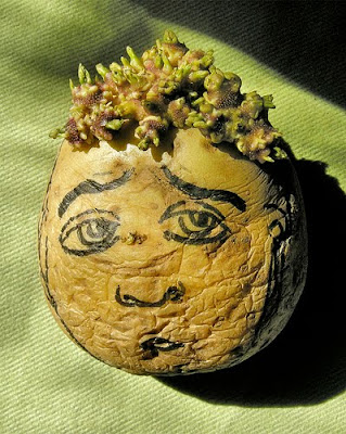 Potato Art and Sculptures (30) 17