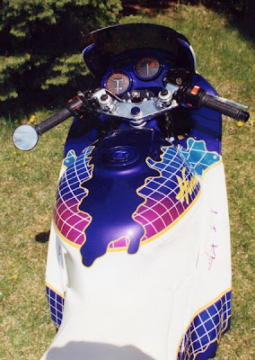 Custom Painted Bikes (15) 12