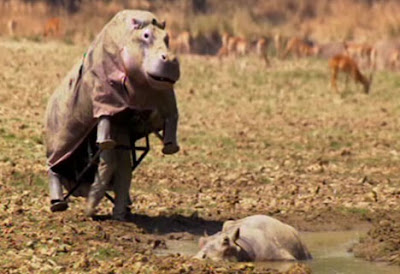 Hippo Attire For Humans (7) 4