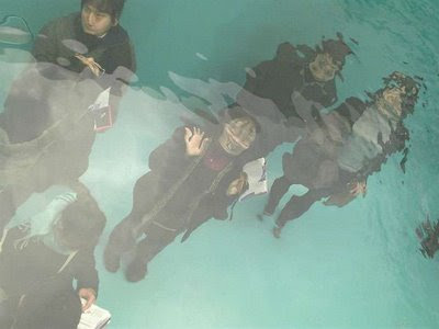 Swimming Pool Installation In 21st Century Museum Of Art Of Kanazawa (7) 5