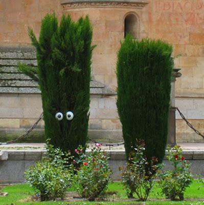 Street Art Installations - Human Plants (5) 2