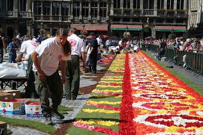 Flower Carpet (9) 9