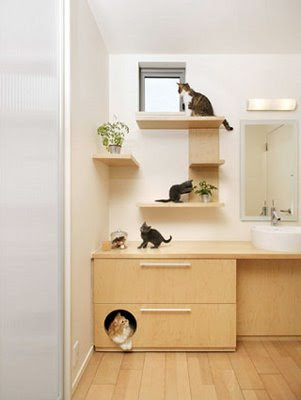 Creative Cat Houses and Cool Cat Bed Designs (21) 18
