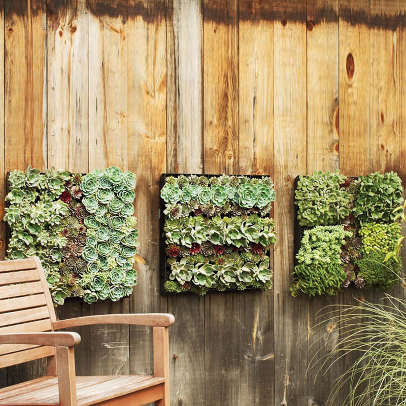 Indoor Wall Planters Decor