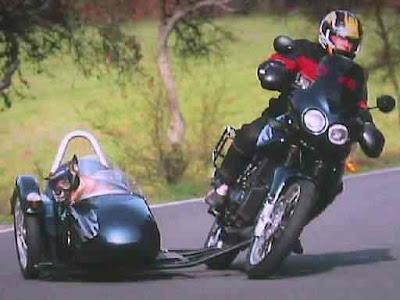 Schwenkers Sidecar