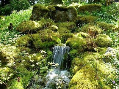 The Butchart Gardens (15) 10