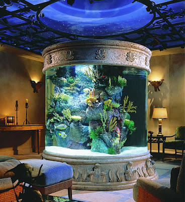 Cool Aquariums and Unusual Fish Tanks Designs (50) 37