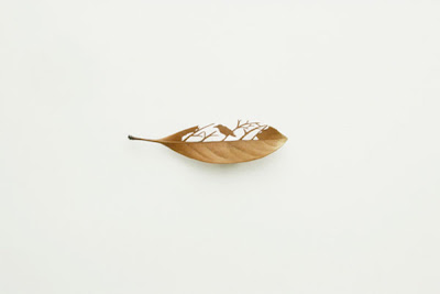 Beautiful Leaf Art (21) 6