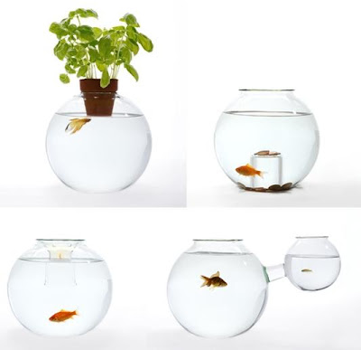 14 Creative and Cool Fishbowl Designs (14) 6