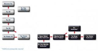 New DSAT Tec Diver program chart