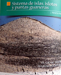 Sistemas de Islas, Islotes y puntas guaneras. Systems islands and guano tips.