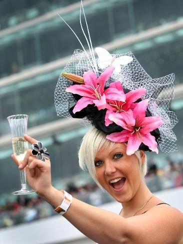 adventure before dementia the melbourne cup