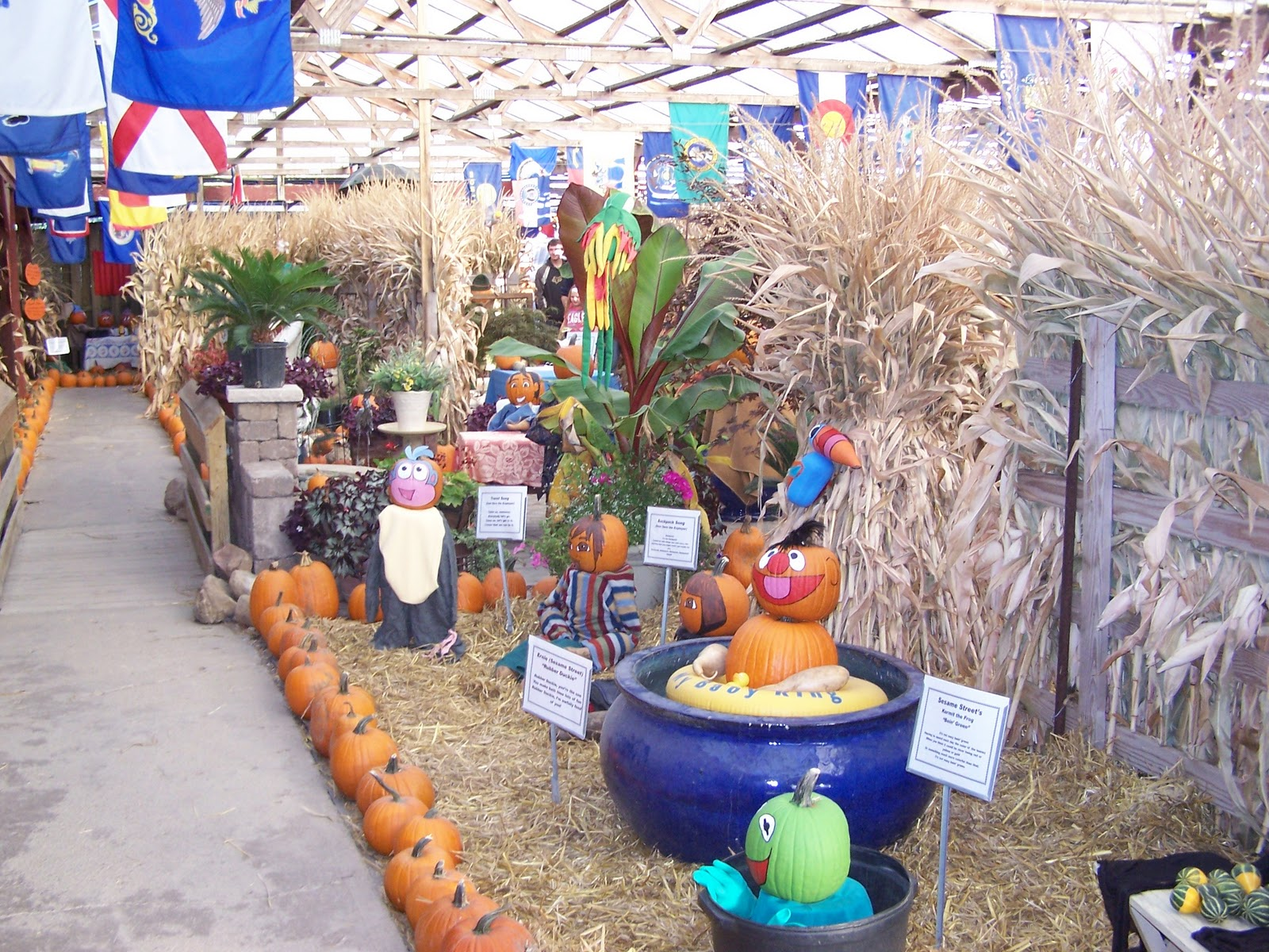 Fashion farm pumpkin fantasyland | city of ligonier, indiana.