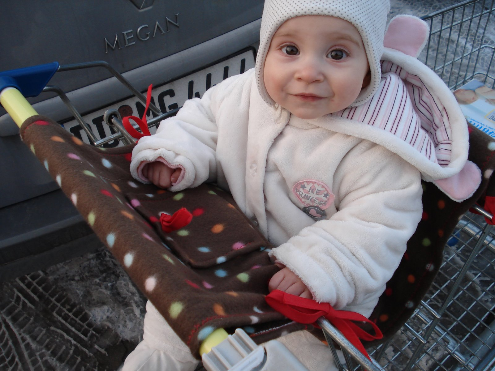 f51a344bc50a26 Da kann mein Kind endlich allein im Einkaufswagen sitzen und was tut es  Es  leckt den Einkaufswagenkorb ab  würg  ... eine Lösung muss her!